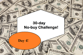30 day - 4