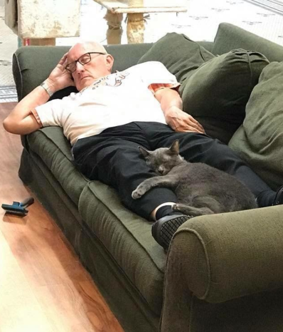 Napping with cats